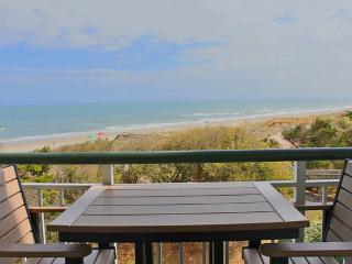 Bridgewater 201 - Oceanfront - Pawleys Island vacation rentals