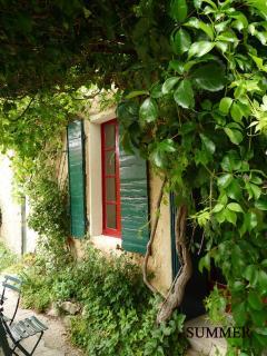 Lovely Vineyard House in the heart of Provence, Va - Vacqueyras vacation rentals