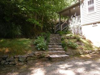 Nana'sWe have it all,Kayaks,tubes,slide,rope swing - Helen vacation rentals