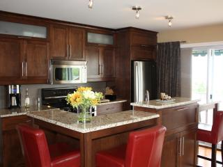 Four-Star Hotel-Apartment with River view - Quebec City vacation rentals