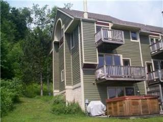 608-V.O. W. Slopeside #29 - McHenry vacation rentals