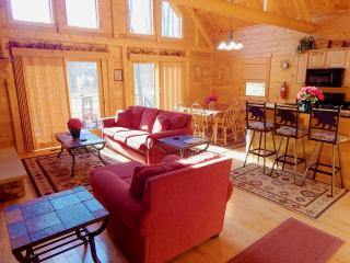 Spacious 4 bedroom House in McHenry - McHenry vacation rentals
