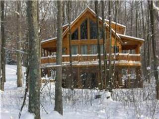 742-Dancing Leaf Lodge - Image 1 - McHenry - rentals
