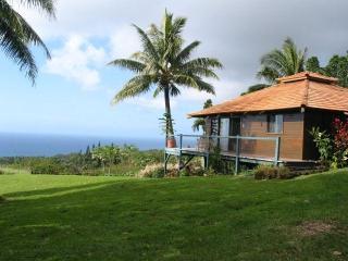 Anyas house honeymoon cottage Hana Maui - Hana vacation rentals