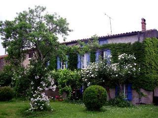 'Le Village'  Maison de Maitre - Belveze-du-Razes vacation rentals