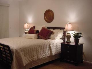 Crown Jewel of Henderson - 3br 2ba ranch w/pool - Henderson vacation rentals