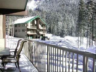 Wheeler Peak 106 - Taos Ski Valley vacation rentals