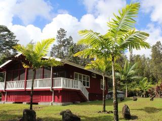 Hale Pua Ula - Pahoa vacation rentals