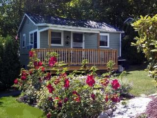 Cozy Inn-Lakeview House & Cottages - Weirs Beach - Weirs Beach vacation rentals