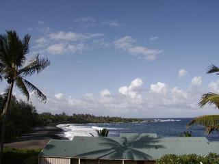Gorgeous Oceanviews! ROMANTIC Hana Kai 206 - Hana vacation rentals