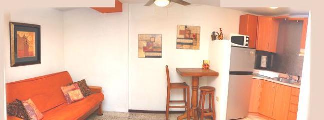 SIDE VIEW OF THE STUDIO UNIT - Cozy Clean Studio steps from Ocean Park Beach - San Juan - rentals