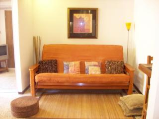 Cozy Clean Studio steps from Ocean Park Beach - San Juan vacation rentals