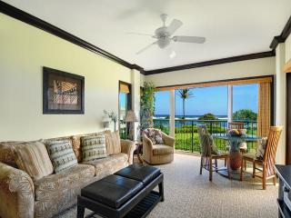 Perfect Condo with Internet Access and Shared Outdoor Pool - Kapaa vacation rentals