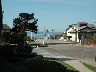 Beautifully decorated condo steps to the beach - Carpinteria vacation rentals