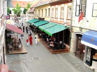Maribor Guba Apartment - Maribor vacation rentals