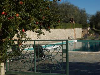Montestigliano - Adriana - Sovicille vacation rentals