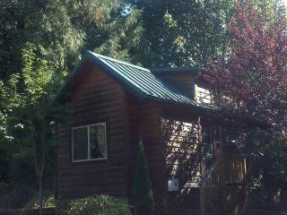 1 bdrm Cozy Mt Hood Cabin Retreat- pool and spa - Rhododendron vacation rentals