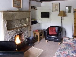 SUNNYMEDE, pet friendly, country holiday cottage, with a garden in Masham, Ref 3969 - Masham vacation rentals