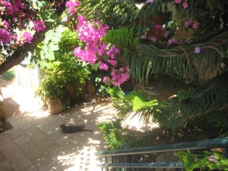 Holiday House by the Nature Reserve (B&B Optional) - Zichron Yaakov vacation rentals