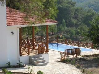 Keci Evi. Fully restored village property. Full A/ - Aegean Region vacation rentals