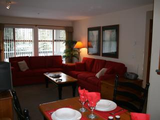 Very popular, fully equipped luxury 1 BR Condo!! - Whistler vacation rentals