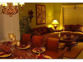 The Emerald Star - FLIPKEY's Top Vacation Villa!! - Kissimmee vacation rentals