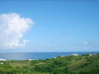 An Oasis of Tranquility with Atlantic Views -- Best Value in Vieques! - Isla de Vieques vacation rentals