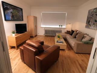 City Central Apartment - Reykjavik vacation rentals