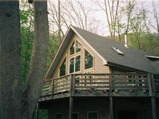 Secluded Asheville area mountain vacation rental - Asheville vacation rentals