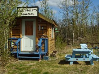 Cozy Clean Cabin Quiet area near Denali Park - Healy vacation rentals