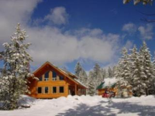 MOOSE CREEK LODGE ~ 3 BEDROOMS - Image 1 - Island Park - rentals