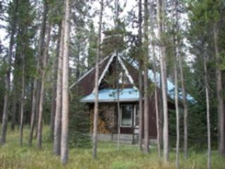 4228 OLD HWY 191 LODGPOLE - Island Park vacation rentals