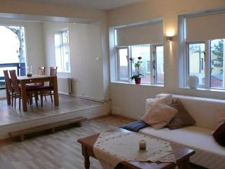 One bedroom large - Reykjavik vacation rentals