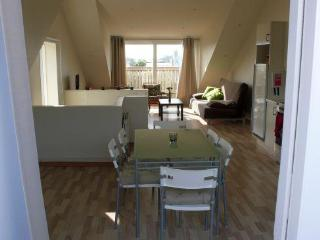 Downtown-Two bedroom penthouse apartment - Reykjavik vacation rentals