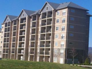 Many 1, 2, and 3 Bedroom Units - Group Rates Avail - Pigeon Forge vacation rentals