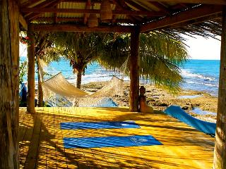 Shakti Home-The villa you've been dreaming about - Treasure Beach vacation rentals