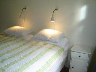 Nice Condo with Internet Access and Garden - Reykjavik vacation rentals
