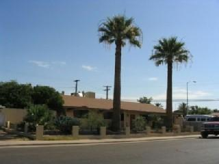 AZ Palm Trees Front of House -2009 - You've Found It! Your Own Pool and Spa.Sleeps 8 - Mesa - rentals