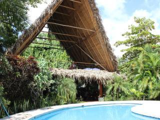Las Brisas De Nosara-- Rental House & Guest House - Nosara vacation rentals
