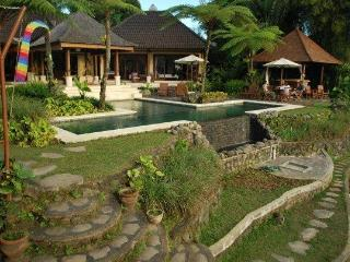 Heaven in Bali (Formerly Orchid Villa) - Ubud vacation rentals