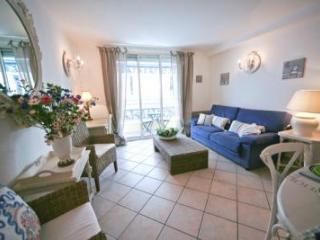 Palais des Fleurs, Excellent 2 Bedroom Cannes Apartment near Palais des Fleurs - La Roquette-sur-Siagne vacation rentals
