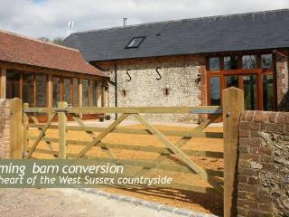 Orchard Barn - Farnham vacation rentals