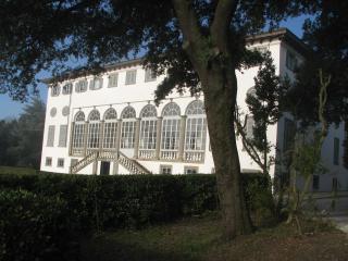 Historic 2 Bedroom Villa in Lucca, Italy - Matraia vacation rentals