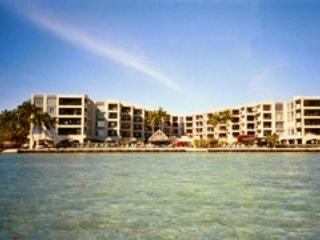 Palms from the Water - THE PALMS 405 - 93 - Islamorada - rentals