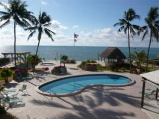 Pool - THE PALMS 316 - Islamorada - rentals