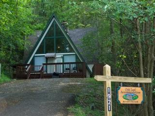 Smoky Bear Hideaway - Gatlinburg vacation rentals