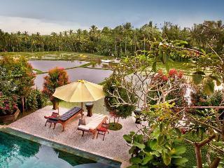 Villa Padi Menari - Beautiful villa in the lush rice fields of Ubud - Ubud vacation rentals