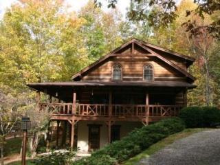Grandmas Cabin - Waynesville vacation rentals