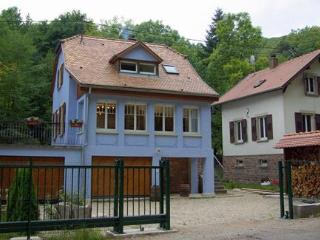 Luxury house in Alsace - sauna, hot-tub & log-fire - Barr vacation rentals