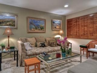 Palm Springs Paradise - Palm Springs vacation rentals